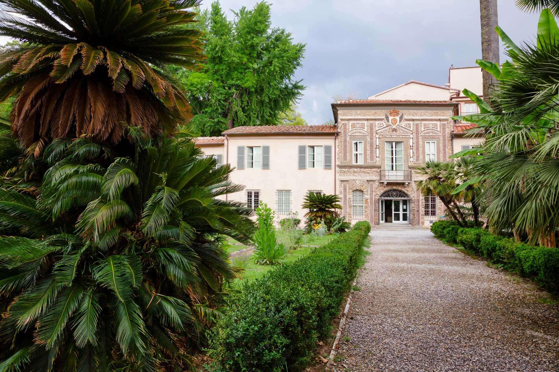 Visiting Pisa's Botanical Garden